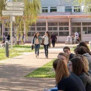 mémoire, université d'Angers, lesbiennes, travail